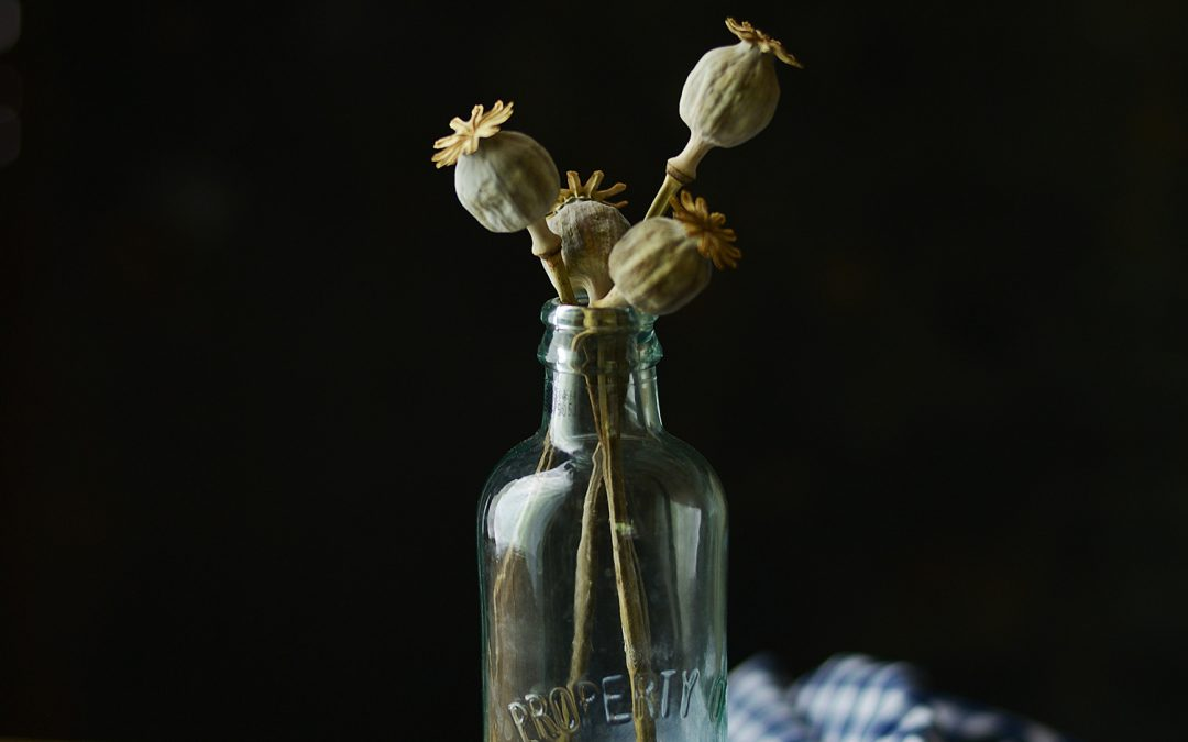 Osteoporóza a zázračný makový olej